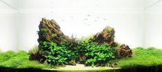 dragon stone cuba aquascape - Google Search