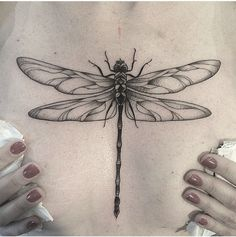 All information about Blue Dragonfly Tattoo Meaning. Pictures of Blue Dragonfly Tattoo Meaning and many more. Mini Tattoos, Trendy Tattoos, Body Art Tattoos, Small Tattoos, Sleeve Tattoos, Tattoos For Women, Heart Tattoos, Dragon Fly Tattoos, Dragonfly Tattoo Design