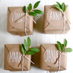 cute packaging- craft paper/grocery bags with plants