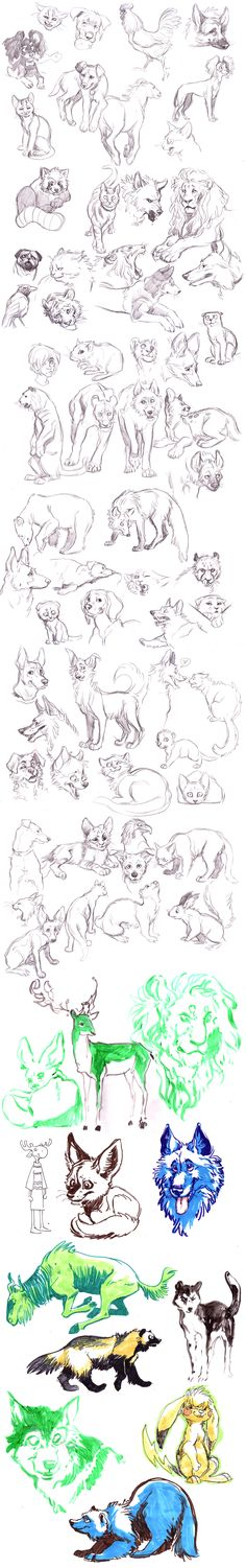 Animals Sketches by *MisterKay on deviantART || CHARACTER DESIGN REFERENCES | Find more at https://www.facebook.com/CharacterDesignReferences if you're looking for: #line #art #character #design #model #sheet #illustration #best #concept #animation #drawing #archive #library #reference #anatomy #traditional #draw #development #artist #how #to #tutorial #conceptart #modelsheet #animal #animals