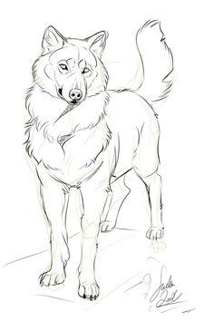 charming wolf by TheMysticWolf on DeviantArt