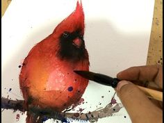 Watercolor bird painting tutorial let you learn easy step by step bird art. This watercolor demo should help you how to make watercolor bird painting in quic. Canvas Painting Tutorials, Watercolor Painting Techniques, Watercolour Tutorials, Watercolor Paintings, Watercolors, Painting Patterns, Painting Tips, Watercolor Red, Watercolor Pictures