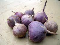 - норма посадки на 1 гектар и выращивание чеснока из однозубки (севка) - ЧЕСНОК ПРОДАМ,СЕМЕНА ЧЕСНОКА,ОДНОЗУБКА,ЗУБОК Summer House Garden, Horticulture, Onion, Garlic, Vegetables, Green, Vineyard, Garden Ideas, Gardening