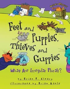 Great book for irregular Plurals