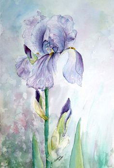 Purple+Iris+Watercolour+Painting+original+Fine+by+CheyAnneSexton,+$300.00