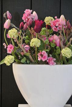 Mooi! Maar met ietsje minder rose... De tulpen en witte bollen zijn gaaf!