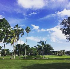 A friendly reminder to all our friends up north ❄️  #repost Lauren Billingslea Dowlen - Realtor at Lowell International Realty: For all our friends with snow ❄️ coming down... it's a gorgeous day on the Granada Golf Course. My team and I at @lowellintrealty specialize in relocation... 😉☀️🌴  #coralgables #coralgablesrealestate #realtor #realestateagency #realestate #Miami #realestatemiami #luxuryrealestate #coralgablesrealtor #lifeinthesunshinestate