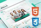 250+ Best Premium Responsive HTML5 CSS3 Website Templates of 2013