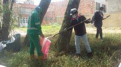 Humedal La Conejera  Aguas de Bogotá SA ESP la empresa del posconflicto, dentro del contrato No.0979-2013 firmado con la Empresa de Acueducto, Alcantarillado y Aseo de Bogotá, adelanta jornada de limpieza en el humedal La Conejera sector 1