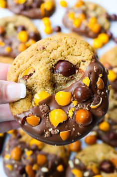 These homemade Chocolate Dipped English Toffee Peanut M&M Cookies are incredibly soft, packed with chocolate chips and feature the new English Toffee M&Ms! Chocolate Dipped, Homemade Chocolate, Chocolate Recipes, Chocolate Chips, M M Cookies, Yummy Cookies, Delicious Desserts, Dessert Recipes, Yummy Food