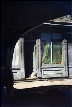 Saul Leiter. 'Dog in Doorway, Paterson' 1952 // pinterest: @hannahoverbeek