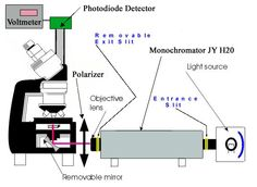 microscope spectrometer - Google Search