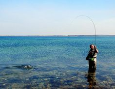 Once a fish has taken your fly there's a number of different ways to react. This article will try to help you hook more fish by adapting your strike