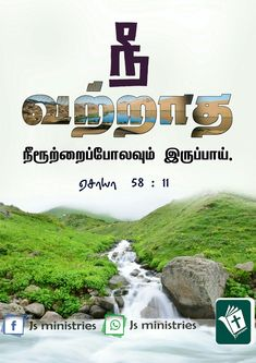 Bible Words In Tamil, Bible Words Images, Morning Blessings, Morning Prayers, Gods Plan Quotes, Bible Quotes, Bible Verses, Blessing Words, Tamil Christian