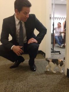 Mark Wahlberg and a kitten -- CAPTION THIS!