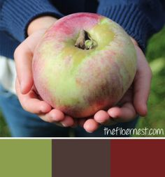 Huge apple