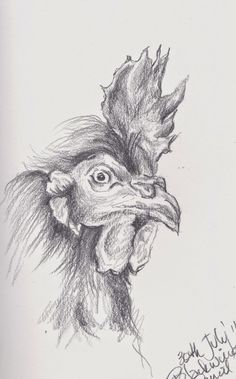 Tracey Fletcher King... Black wing pencil