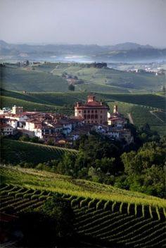 The Vineyards, Barolo, Cuneo, Italy