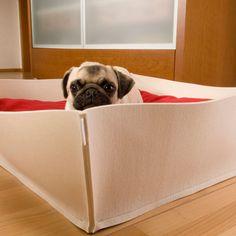 BOWL Hundebett in Filz mit orhopädischem Kissen, dog bed out of felt with orthopedic cushion, letti per cani feltro con cuscino ortopedico. http://www.pet-interiors.de/de/bowl-filz-hundebetten_artnr152601