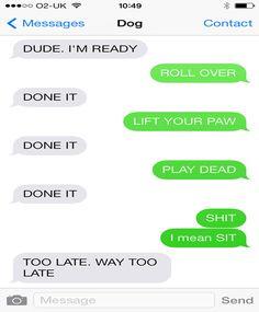 Dog texts that I found funny. Funny Dog Texts, Funny Texts Jokes, Text Jokes, Stupid Funny Memes, Funny Relatable Memes, Funny Quotes, Funny Stuff, Funny Pics, Funny Shit