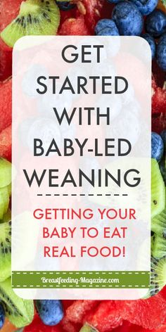 Natural Baby Led Weaning: Skip Baby Food to Introduce Real Food First – Organics® Baby food Natural Parenting, After Baby, Baby Led Weaning, Foods To Avoid, To Infinity And Beyond, Pregnant Mom, First Time Moms, Natural Baby, Meals For One