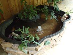 koi pond on the back porch