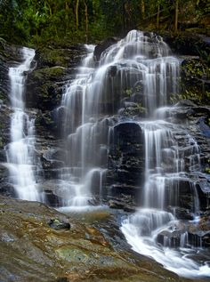 Sylvia Falls located in the Wentworth Falls in the Blue Mountains, NSW, Australia.
