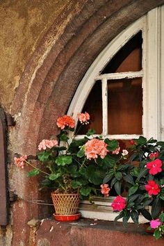 Arched window with flower pots ..absolutely charming