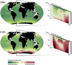Acidification due to climate change - impacts for oceans and coral reefs
