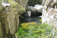 Corsica - Fleuves et Rivieres -  Le Tavignano est un fleuve de Haute-Corse, qui se jette dans la mer Tyrrhénienne.Le Tavignano, plus long fleuve de Corse après le Golo, 88,7 km naît au-dessus du lac de Nino à 1 743 mètres d'altitude, à la limite entre les communes de Corte et Casamaccioli, à moins de deux kilomètres du Punta Artica (2 327 m) et au sud des sources et de la vallée du Golo.