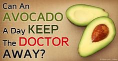 Can An Avocado A Day Keep The Doctor Away?