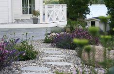 New England garden in Sweden, the hamptons garden design, Coastal Swedish garden… Gravel Garden, Garden Paths, Garden Beds, Landscape Design, Garden Design, Landscape Architecture, Scandinavian Garden, Hampton Garden, Flower Garden Plans