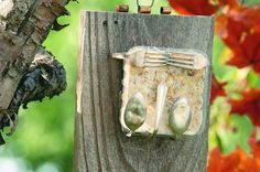 Suet feeders bring in woodpeckers and more all year long. Offer birds some suet in a unique homemade suet feeder made from recycled silverware.