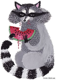 Raccoon with watermelon by Saara Katariina Söderlund