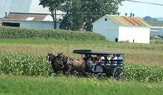 Amish Countryside in Lancaster, PA.  I would love to do a buggy ride and see their quality handicrafts and beautifully simple perspectives.