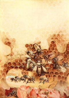 """*The Queen Takes Possession .* Another illustration by Edward J. Detmold from Maeterlinck's """"The Children's Life of the Bee"""" Bee Illustration, I Love Bees, Vintage Bee, Bee Tattoo, Insect Art, Bee Art, Bee Design, Save The Bees, Bee Happy"""