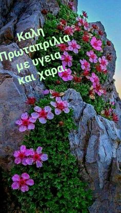 Greek Quotes, Diy And Crafts, Spirituality, Outdoor Decor, Plants, Beautiful, Art, Flowers, Art Background