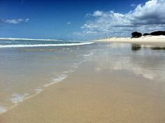 Couran Cove, Australia: http://www.flightcentre.ca/blog/destinations/my-love-affair-with-couran-cove/5409
