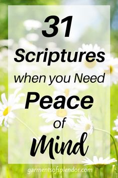 We all need more peace in our lives! Are you in need of peace today? Take a look at these 31 Scriptures when you need peace of mind. Download a free Scripture reading plan and remind yourself that Jesus is you peace each day! #scriptures #bibleverses #scripturereadingplan #biblestudy Peace Scripture, Scripture Reading, Scripture Cards, Prayer For Job Interview, Scriptures, Bible Verses, Hope In God, Overcome The World, Study Methods