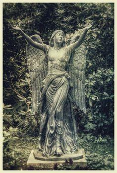 Coisas de Terê Angel - Cemetery in Hamburg, Germany.