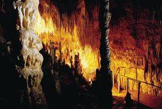 Hastings cave, Tasmania