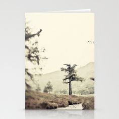 Blea Tarn Stationery Cards by jphoto - $12.00