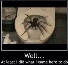 hahaha. I'd run outta there so fast, there would be a trail of what I went in there to do, straight down the hallway!