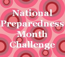 2013 National Preparedness Month Challenge. Can't wait to see how this post develops through the month - great idea! - MilitaryAvenue.com