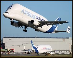 A300-600ST Beluga Airbus by Jos Leendertse, via Flickr