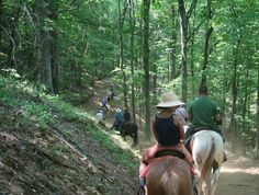 Sandy Bottom Trail Rides horseback riding with breath-taking scenery on a secluded family ranch just north of Asheville. Chose from one, two, three or four hour rides….one even stops at a 200 year old garnet gem mind…and yes, you get to keep the gems you find!   Sandy Bottom Trail Rides: 1459 Caney Fork Road, Marshall, NC  28753 800-959-3513  or  828-649-3464  #horse #horsebackriding #sandybottom#madisoncounty #asheville #gemmine AshevilleVacationHomes.com