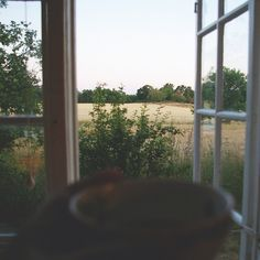 My life consists of books and lots of coffee. Be a force of nature and. Bonheur Simple, Haus Am See, Window View, Through The Window, Slow Living, Country Life, Country Living, Farm Life, Life Is Good