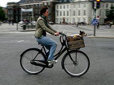 Cyclingchic