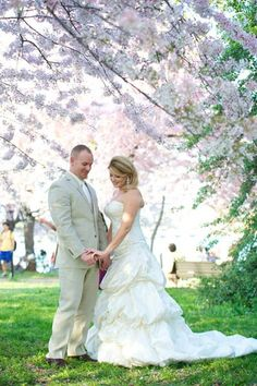 Snap some photos beneath a beautiful cherry blossom tree.Photo Credit: Stacey Vaeth Photography