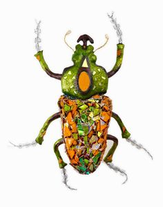 insect artist - Google Search